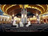 Мансур ас Салими. до слёз! Как он Красиво читает Коран!