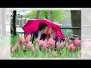 Самый красивый романс Губами губ твоих коснусь Валерий Чередниченко