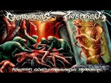 Gastrorrexis & Infectology - Putrescent Genetic Abnormalities Aberrations [Split] (2015) (FULL)