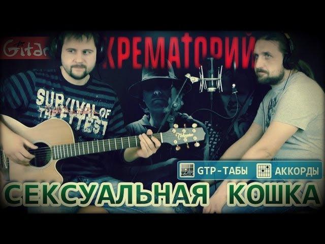 Сексуальная кошка - КРЕМАТОРИЙ / Как играть на гитаре (2 партии)? Аккорды, табы - Гитарин