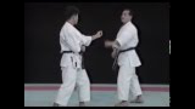 Лучшая техника рук в каратэ - Сейджи Нишимура. Seiji Nishimura Best Karate Punch Techniques 2