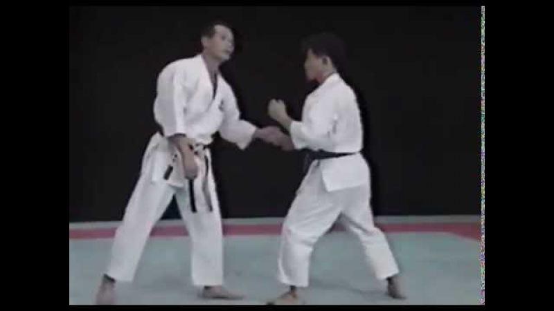 Лучшая техника рук в каратэ - Сейджи Нишимура. Seiji Nishimura Best Karate Punch Techniques 1