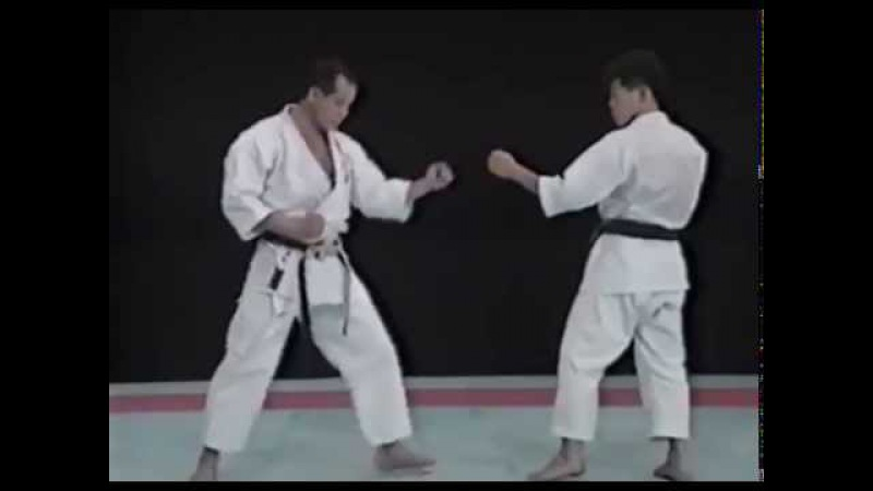 Лучшая техника рук в каратэ - Сейджи Нишимура. Seiji Nishimura Best Karate Punch Techniques 3