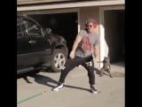 танцы с котом😹