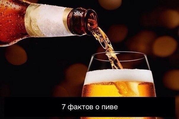 Кодировка от алкоголизма в могилеве