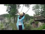 Как снять панду с дерева (2015)