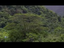 Маркизские острова райский уголок Marquesas Islands paradise