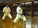 Семинар по Каратэ Шотокан - Хироши Шираи в Польше 1992 год - часть 1 (ката Bassai-Dai)