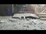 Взрыв прогремел у здания СБУ в Одессе  Размер 1.98 Mб Код для вставки в блог     Мощный взрыв прогремел у здания СБУ в Одессе.