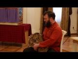 Василий Евхимович (г. Ярославль) IV Межрегиональный фестиваль