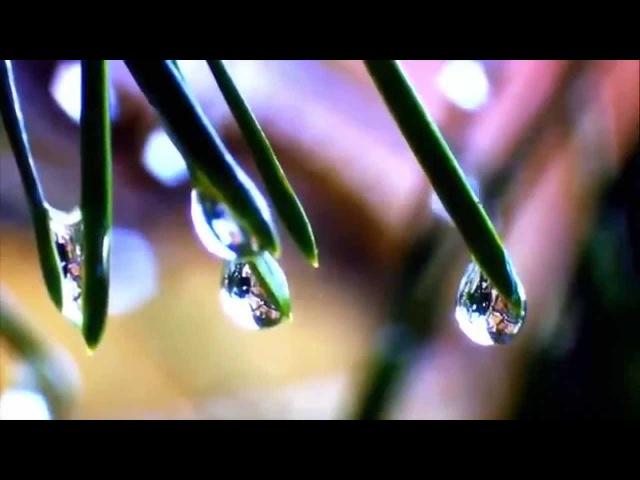 Смысл духовного развития человека. О Душе, чувствах, Вечности, Любви...