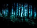 Dark ForestGoaTwilightProgressive Psy Trance Mix - 2013 - ToPsy Turvey - EckoTek Soundsystem