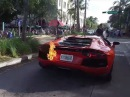 Video shows a Lamborghini catch fire when valet gets carried away in South Beach Florida