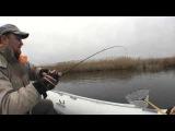 Отчет с рыбалки на щуку. Бешеный клёв. 23.02.2016
