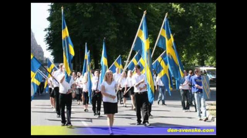 Svensk Ungdom - Vi har fått nog