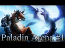 Hearthstone Paladin Arena: Cro and a Pro a Hafu Arena Co-op part 1