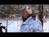 Охота с флажками на волка
