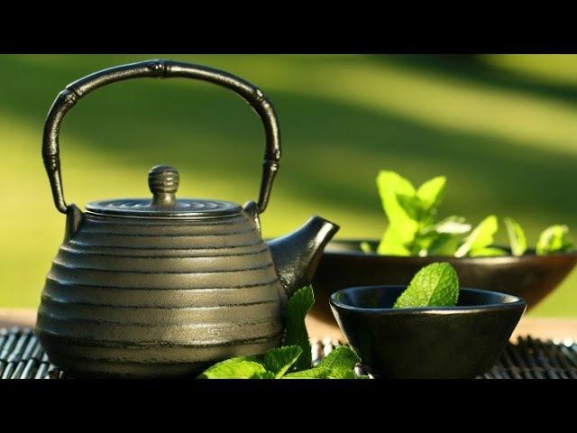 Пища богов. Злаковые, ягоды, ягодные чаи (17.09.2013)