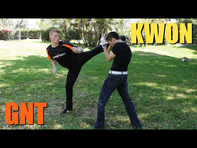 Kickboxing vs Taekwondo | Martial Arts Fight Scene