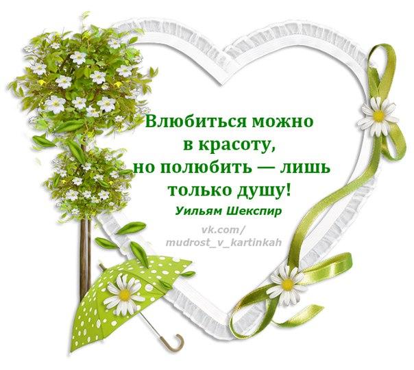 https://cs7061.vk.me/c627531/v627531385/3f6b7/Eh6CqR0vXUg.jpg
