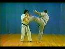 Боевая техника каратэ Ашихара