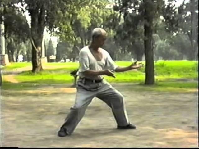 Chen style taijiquan: Master Deng Jie at Tiantan Park 1989