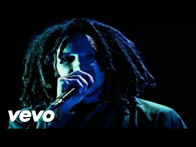 Rage Against The Machine - Guerrilla Radio (from The Battle Of Mexico City)
