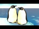 Уроки Тетушки Совы. Весёлое кругосветное путешествие (Антарктида)