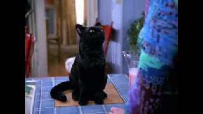 Tribute to Salem Saberhagen season 7 (Russian version)