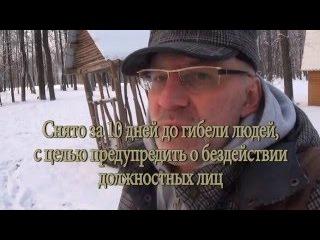 Нападения медведей на человека - почему в России гибнут люди от нападения медведей