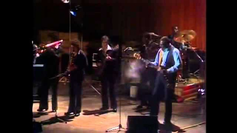 Albert King - The Sky Is Crying 1980 г.