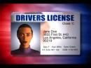 Prawo Jazdy w USA na Samochod i Motocykl - Polski Motovlog w USA