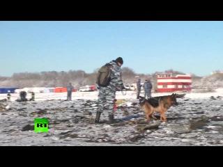 Поисковая операция на месте крушения Boeing 737-800 в аэропорту Ростова-на-Дону