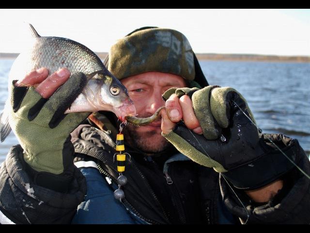Ловля хищного леща на спиннинг. EsseFish