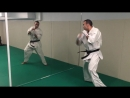 Djema belkhodja first shadow boxing kyokushin in my Dojo