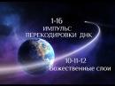 1-16. Импульс перекодировки ДНК (10-11-12 Божественные слои)