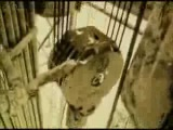 Эдуард Артемьев - Смерть героя (Поход) (Soundtrack