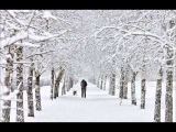 Джанго -- Снег