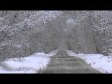 Едем за город Зимний лес после снегопада съемки камерой sony fdr ax  33 4k video