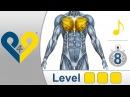 Тренировка груди -  уровень 3