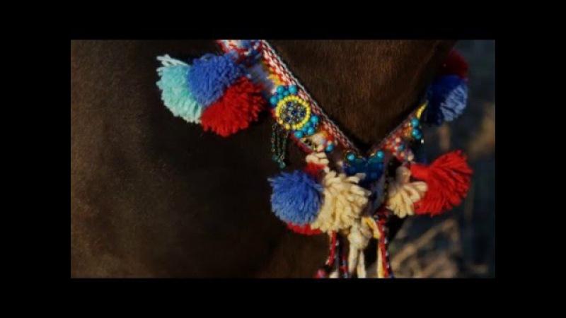 Аладжа для лошади - оберег от сглаза
