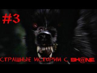 Страшные истории с Shne #3 - Кто то ходит за дверью
