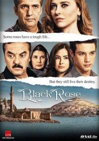 Rosa negra 1x263