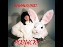 Злая Зая  - объявлен розыск на YouTube!!! ( Big Buck Bunny )