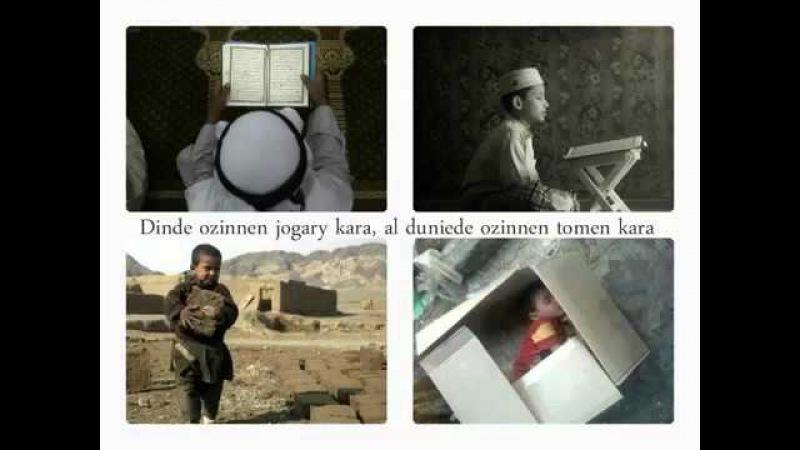 Дарын Мубаров Дүние мәселесінде өзіңнен төменге қара