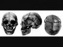 Реконструкция ранних Финно-Угров\The facial type of the early Finno-Ugrians