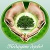 Даруєм дерева