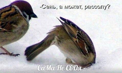 https://pp.vk.me/c627619/v627619693/31322/6GU3_aPAFGI.jpg