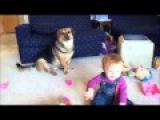 Весёлый ребёнок и собака играют с мыльными пузырями