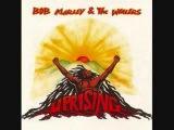 Bob Marley - Zion Train 06